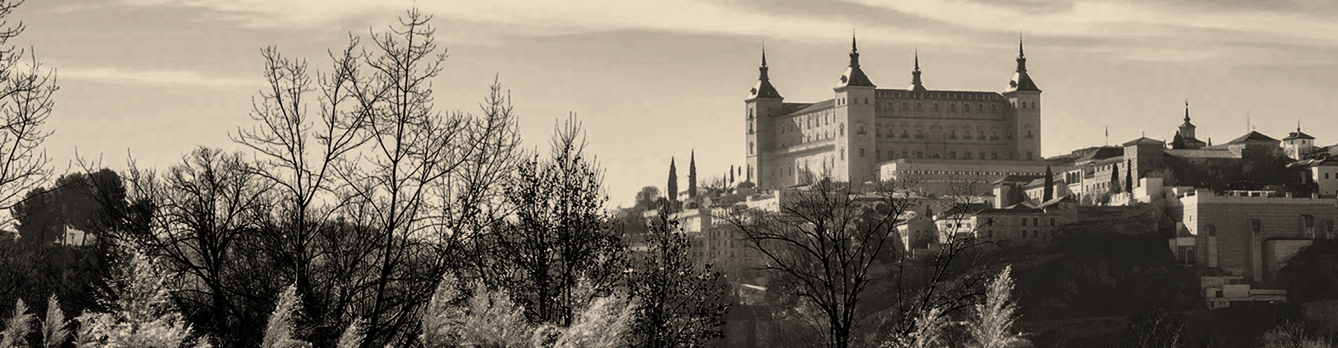 Toledo día completo - 8 horas - 600 €